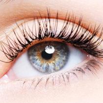 Woman eye with a curl false eyelashes